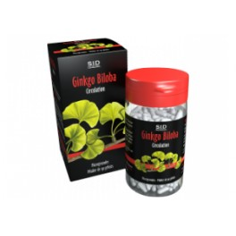 Phytoclassics Ginkgo biloba 90 gélules